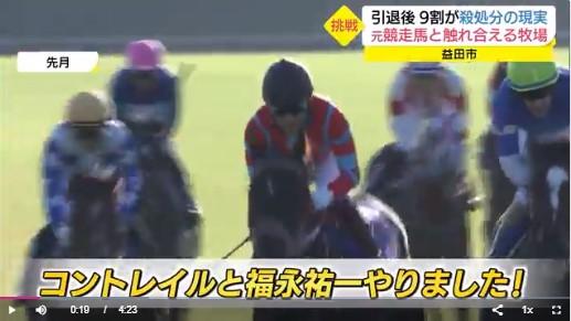 【TV放送!】元競走馬 第2の舞台は牧場!歴史的名馬「ディープインパクト」の子どもも活躍(島根・益田市)