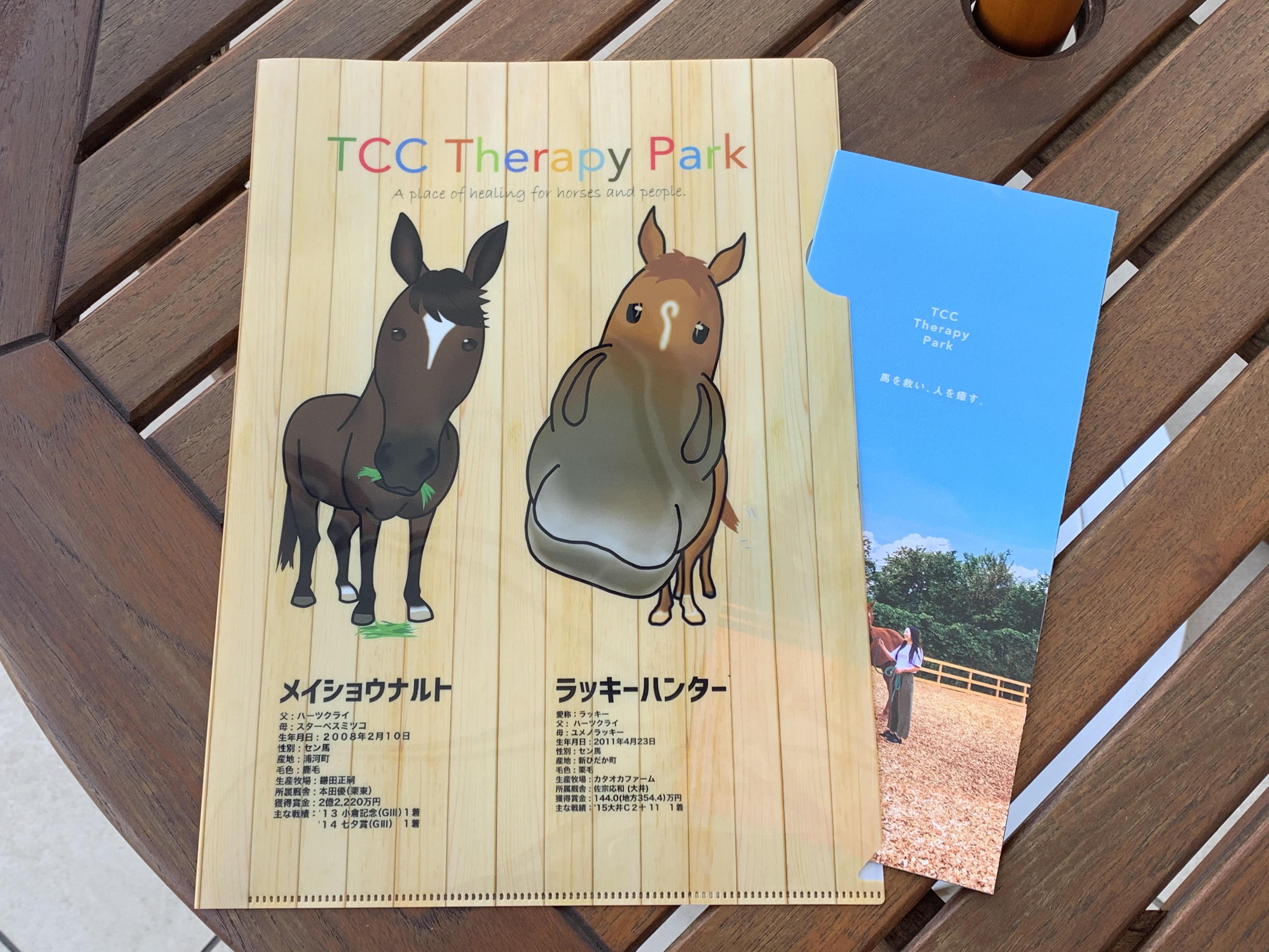 クリアファイル【TCC Therapy Park】ラッキー&ナルト