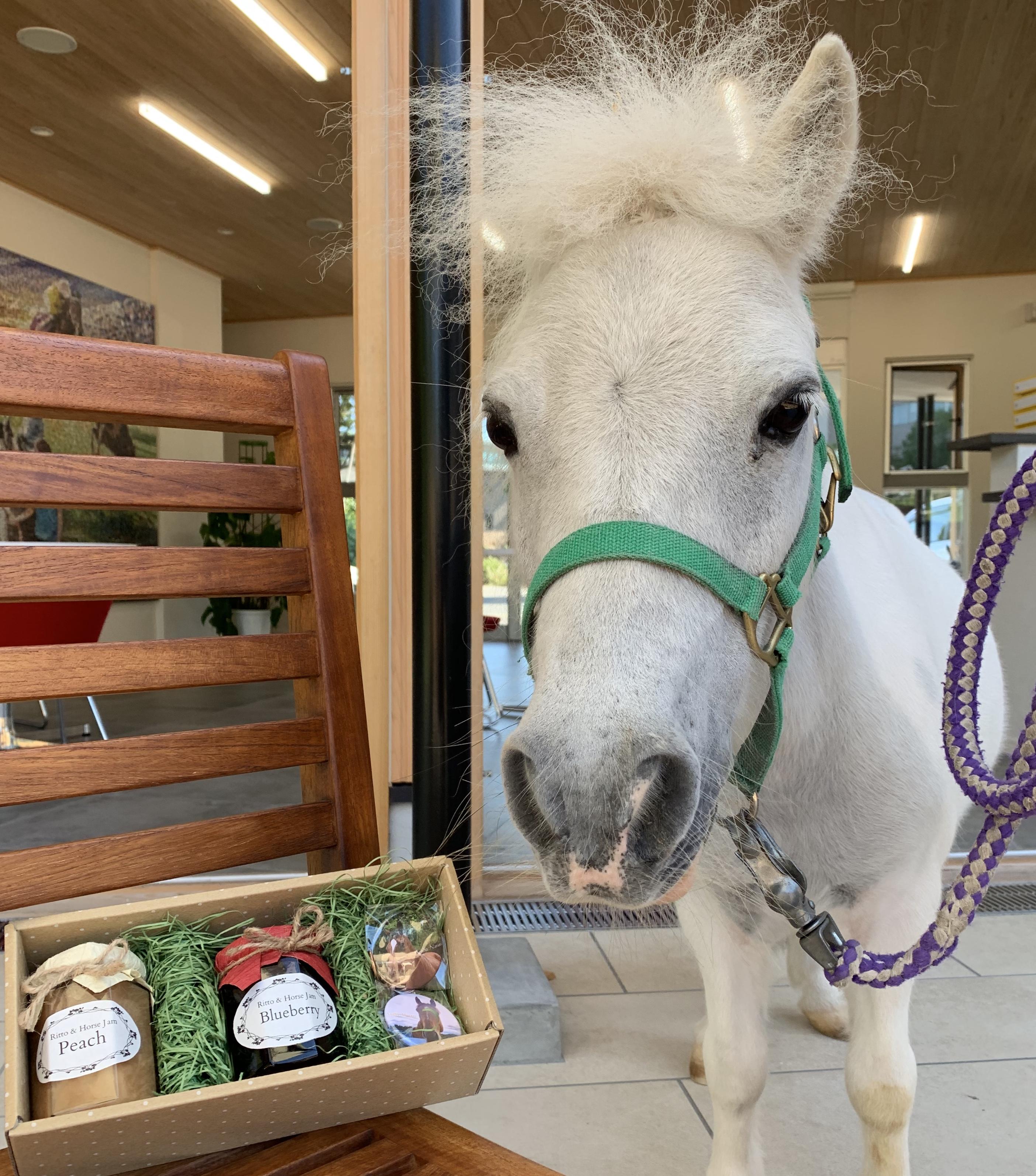 完売【Ritto Horse Jam】栗東産ジャム+缶バッジセット2020