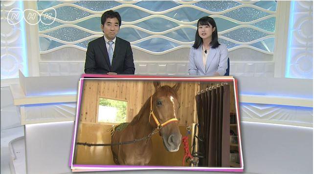 【放送】NHK「おうみ発630」の動画公開!