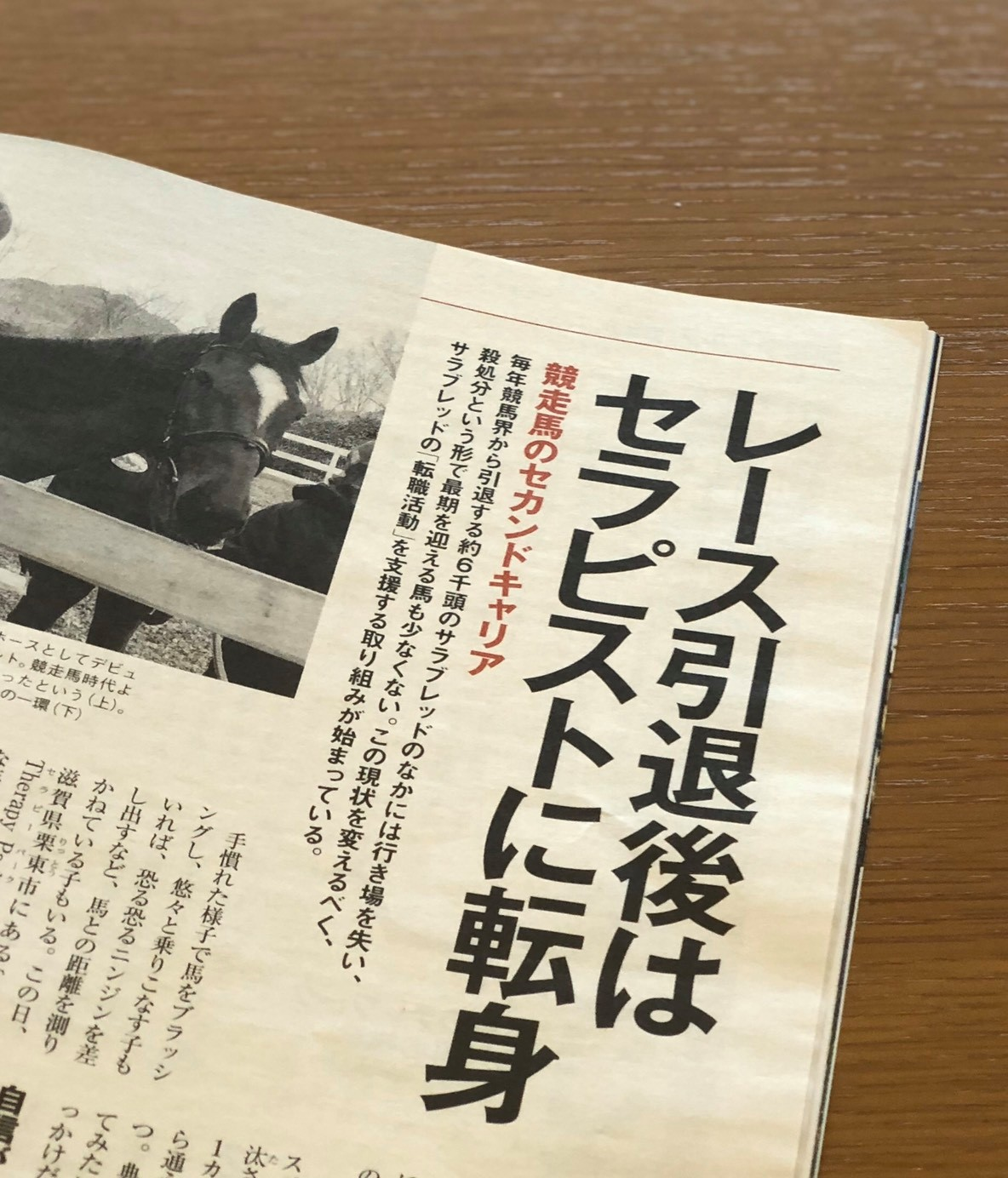 【掲載】雑誌『AERA』(3月23日号)~レース引退後はセラピストに転身